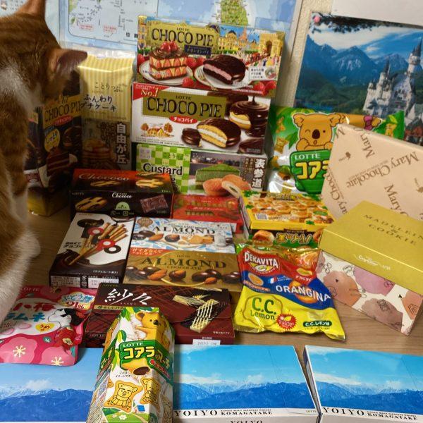 ロッテ お菓子の定期便7月ボックス中身ネタバレ